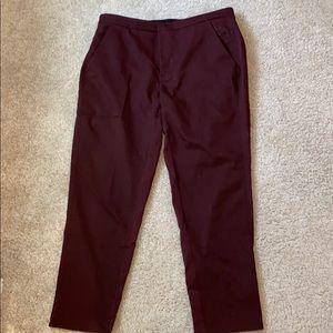 Burgundy slacks